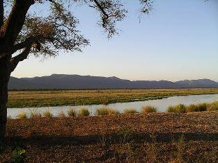 River Sharon Markey