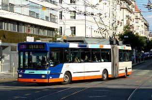 Trolleybus Sharon Markey