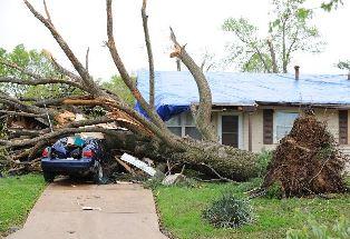 Storm damage Carol Round