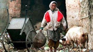 Dalits still do the most menial jobs