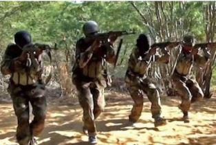 smaller Al Shabaab militants