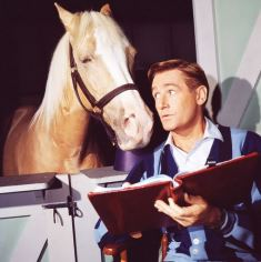 Alan Young playing opposite Mr. Ed