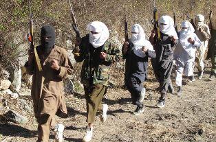 Terrorists in training