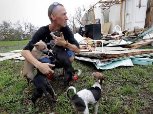 Man with dogs in storm smaller