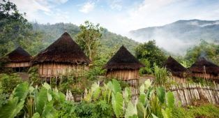 Thatched roof houses in PNG smaller