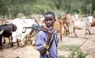 Armed Fulani herdsman.JPG smaller