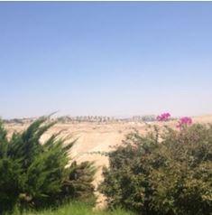 Jerusalems Desert smaller
