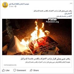 Palestinian burning for Cheryl smaller