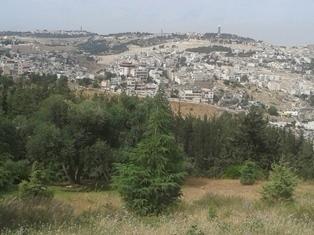 Jerusalem 7 084 smaller