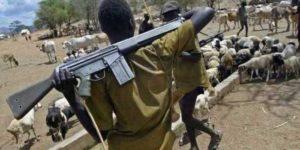 NIGERIA herdsman